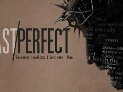 New Series: Past Perfect